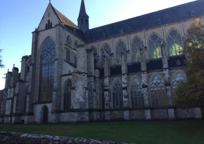 Altenbergo katedra